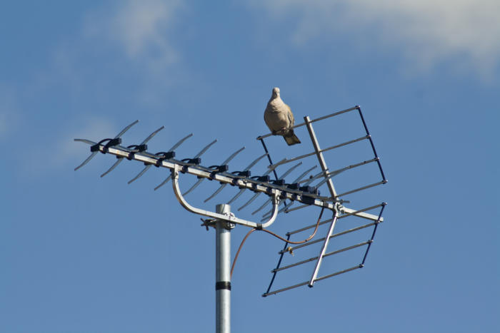 tv fix antenna